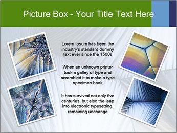 Acid in polarized light PowerPoint Template - Slide 24