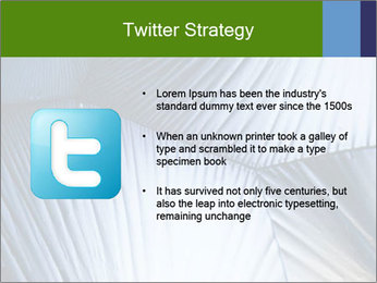 Acid in polarized light PowerPoint Template - Slide 9