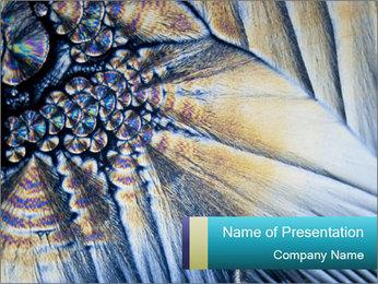 Microphoto Modèles des présentations  PowerPoint