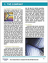 0000091473 Word Template - Page 3