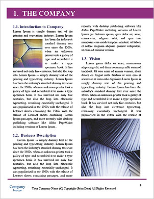 0000091474 Word Template - Page 3