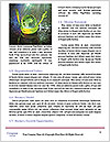 0000091477 Word Template - Page 4