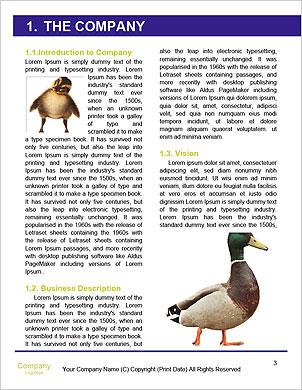 0000091478 Word Template - Page 3