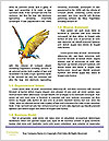 0000091478 Word Templates - Page 4