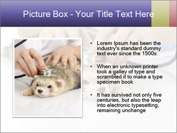 The veterinary PowerPoint Templates - Slide 13