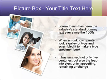 The veterinary PowerPoint Templates - Slide 17