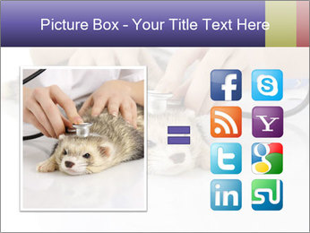 The veterinary PowerPoint Template - Slide 21