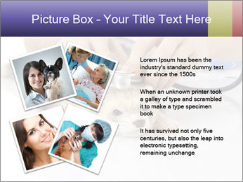 The veterinary PowerPoint Templates - Slide 23