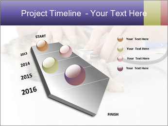 The veterinary PowerPoint Templates - Slide 26