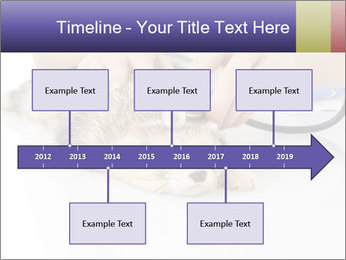 The veterinary PowerPoint Template - Slide 28