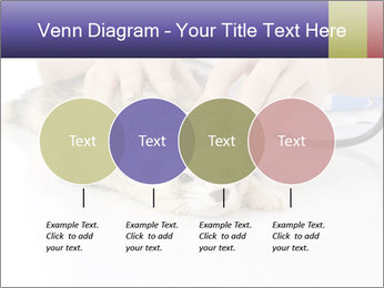 The veterinary PowerPoint Template - Slide 32