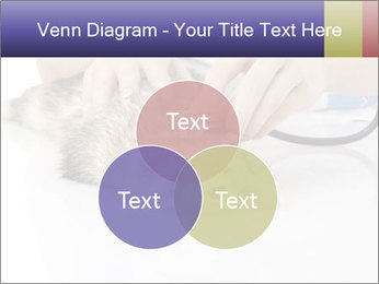 The veterinary PowerPoint Templates - Slide 33