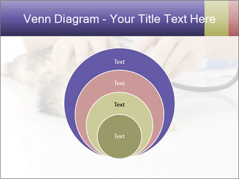 The veterinary PowerPoint Template - Slide 34