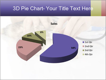 The veterinary PowerPoint Template - Slide 35