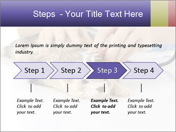 The veterinary PowerPoint Template - Slide 4
