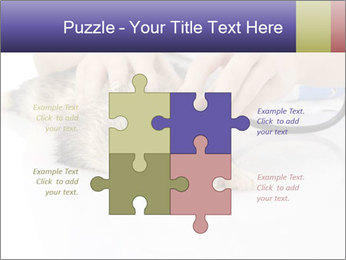 The veterinary PowerPoint Template - Slide 43
