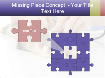 The veterinary PowerPoint Template - Slide 45