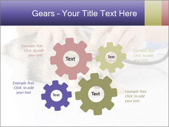 The veterinary PowerPoint Templates - Slide 47