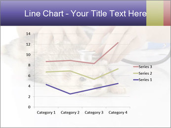 The veterinary PowerPoint Templates - Slide 54