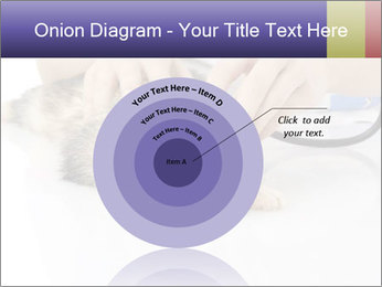 The veterinary PowerPoint Template - Slide 61