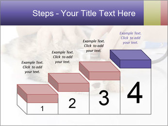 The veterinary PowerPoint Template - Slide 64
