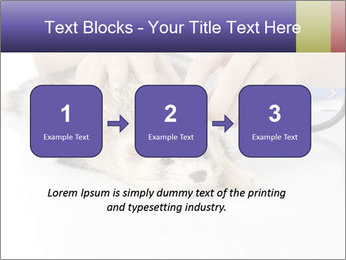 The veterinary PowerPoint Templates - Slide 71