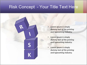The veterinary PowerPoint Template - Slide 81