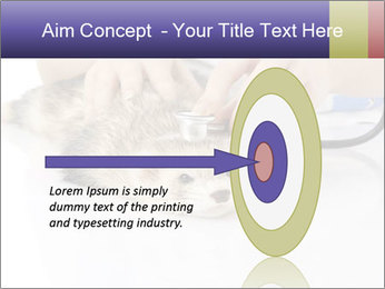The veterinary PowerPoint Template - Slide 83