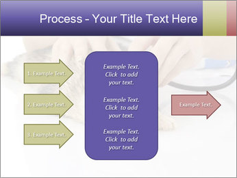 The veterinary PowerPoint Template - Slide 85