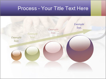 The veterinary PowerPoint Template - Slide 87