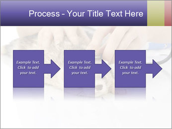 The veterinary PowerPoint Template - Slide 88