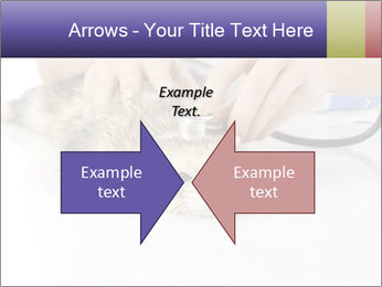The veterinary PowerPoint Templates - Slide 90