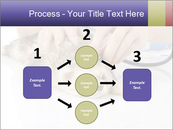 The veterinary PowerPoint Templates - Slide 92