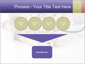 The veterinary PowerPoint Templates - Slide 93