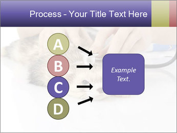 The veterinary PowerPoint Template - Slide 94
