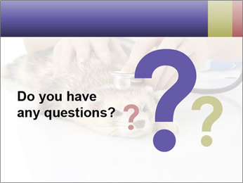 The veterinary PowerPoint Templates - Slide 96