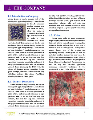 0000091482 Word Template - Page 3