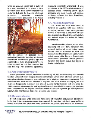 0000091484 Word Template - Page 4