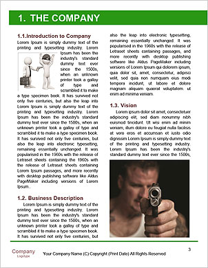 0000091485 Word Template - Page 3