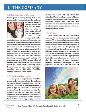 0000091486 Word Template - Page 3