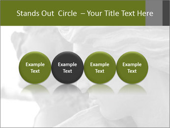 Carved statue PowerPoint Template - Slide 76