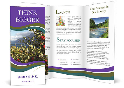 0000091491 Brochure Template
