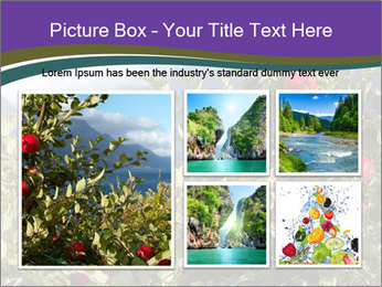 Apple-tree in the foreground PowerPoint Templates - Slide 19