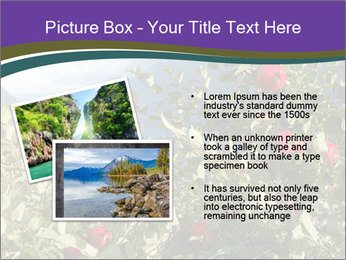 Apple-tree in the foreground PowerPoint Templates - Slide 20
