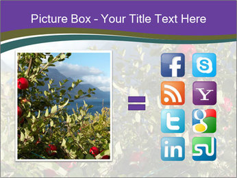 Apple-tree in the foreground PowerPoint Templates - Slide 21