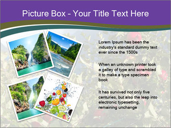 Apple-tree in the foreground PowerPoint Templates - Slide 23