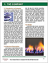 0000091496 Word Template - Page 3