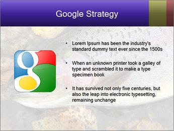 Wild rainbow PowerPoint Template - Slide 10
