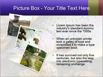 Wild rainbow PowerPoint Template - Slide 17