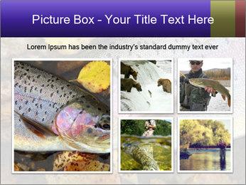Wild rainbow PowerPoint Template - Slide 19